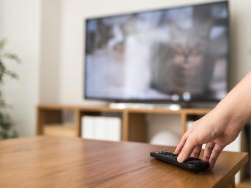 今や大半の人が所有しているテレビ